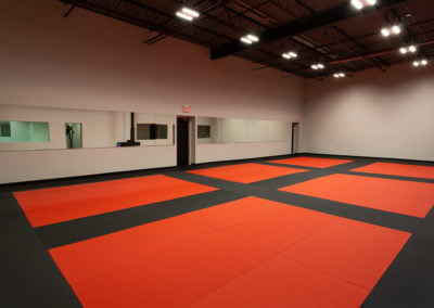 Burlington Taewkondo training mats