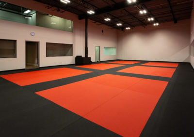 Burlington Taekwondo DCR Academy training grounds black red mats
